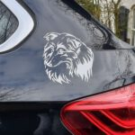 Sticker op auto